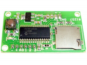 Analog Data Logger to Memory Card